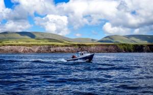 Petit bateau dans la baie de Dingle