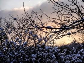 La neige en Lorraine