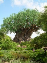 L'Arbre de la Vie à Animal Kingdom