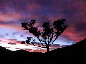 L'aube à Fletcher Bay