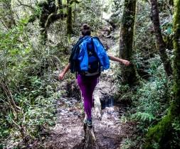 Sac de randonnée dans le Tongariro