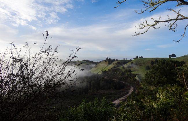 Vers Waitomo caves