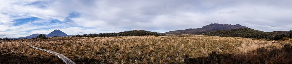 Panorama des deux volcans