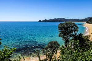 La côte d'Abel Tasman