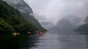 Kayak sur Doubtful Sound