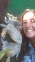 Selfie Koala