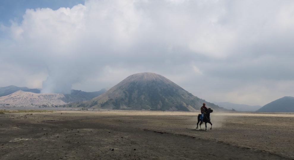 Cavalier dans le désert