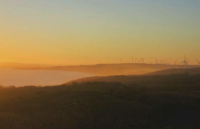 coucher de soleil eoliennes Albany
